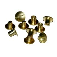 Buchschrauben / Chicagoschrauben 10mm - vermessingt - 10er Pack