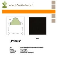 Vollrind-Gürtel-Hals PRIMUS - schwarz