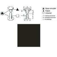 Hohlnieten 5mm - RIV 31/8 - bronziert - 100er Pack