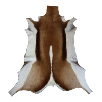 Springbockfell - natur - Wildware